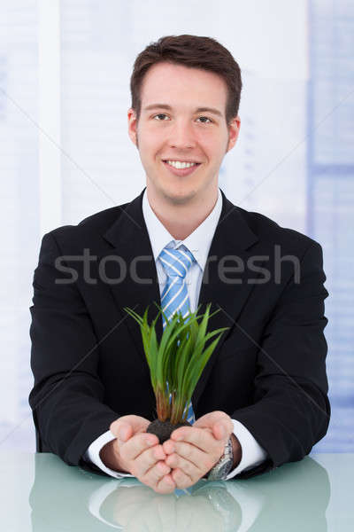 Confident Businessman Holding Saplings At Desk Stock photo © AndreyPopov