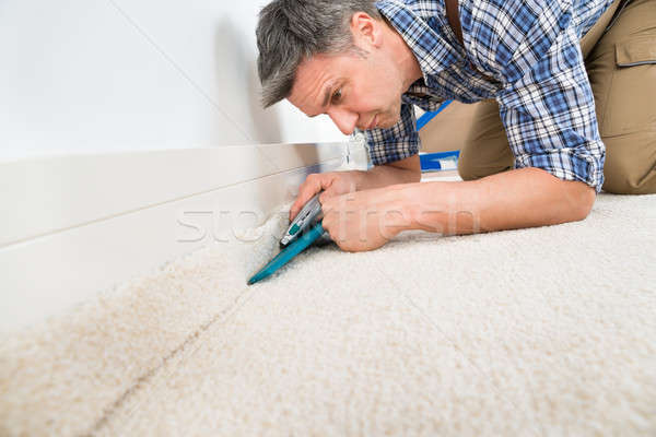 Craftsman Fitting Carpet Stock photo © AndreyPopov
