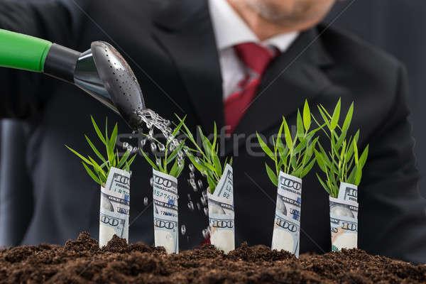 Imprenditore soldi impianti coperto americano Foto d'archivio © AndreyPopov