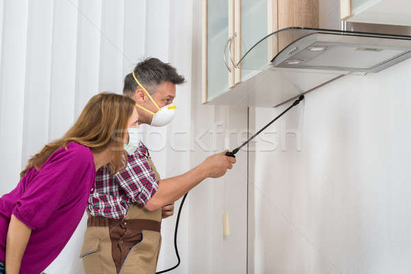 Male Worker Spraying Insecticide Under Cabinet Stock photo © AndreyPopov