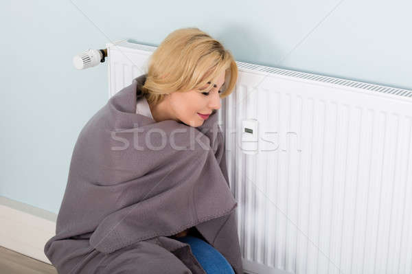 Woman With Blanket Suffering From Cold Stock photo © AndreyPopov