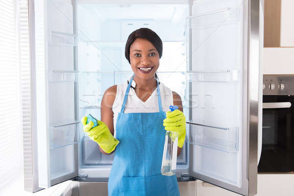 Woman Holding Rag And Spray Bottle In Front Of Refrigerator Stock photo © AndreyPopov