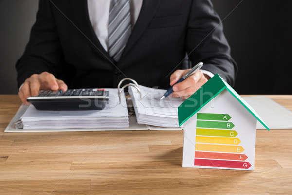 Imprenditore finanziaria dati casa modello Foto d'archivio © AndreyPopov