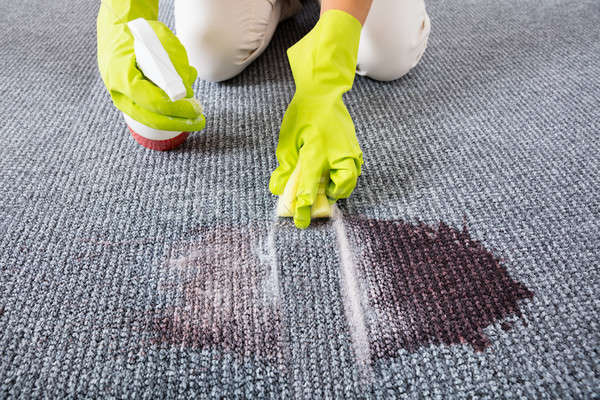 Woman Wiping Stains On The Carpet With Spray Bottle Stock photo © AndreyPopov