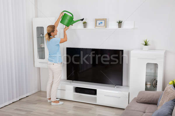 Woman Watering Plant At Home Stock photo © AndreyPopov
