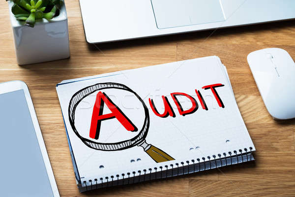 Audit And Fraud Investigation In Notepad Stock photo © AndreyPopov