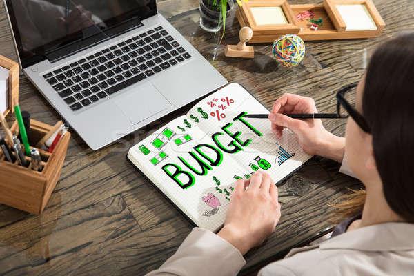 Nő rajz költségvetés kiadások terv notebook Stock fotó © AndreyPopov