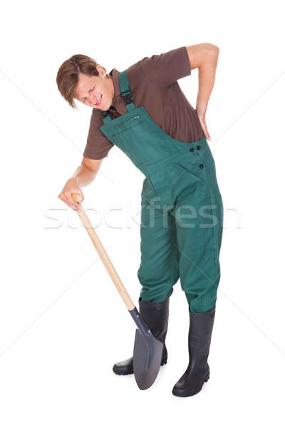 Male Gardener Suffering From Back Pain Stock photo © AndreyPopov