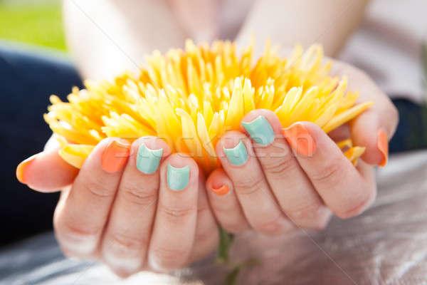 Handen bloem nagel vernis Stockfoto © AndreyPopov