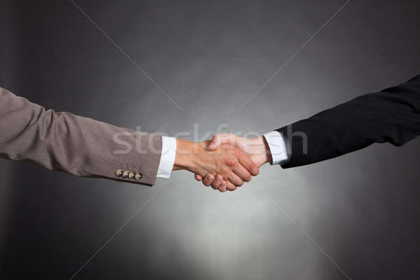 Businessmen Shaking Hands Stock photo © AndreyPopov