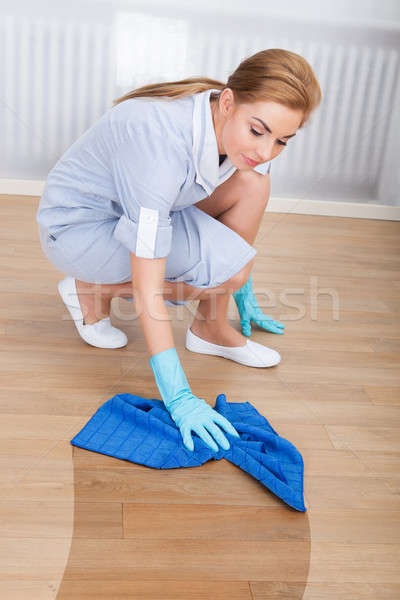 Maid Cleaning Hardwood Floor Stock photo © AndreyPopov