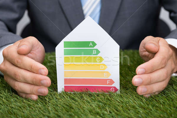 Stock photo: Businessman Protecting Energy Consumption Label On Grass