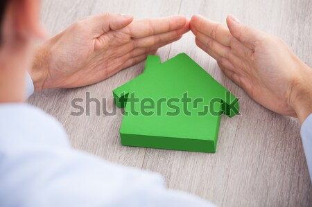Stock fotó: Személy · tart · zöld · törött · ház · közelkép