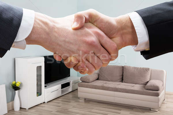 Realtor Shaking Hands With Businessman In Living Room Stock photo © AndreyPopov