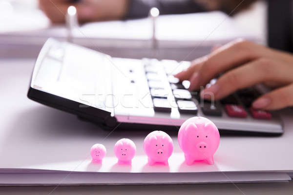 Close-up Of Increasing Pink Piggybank Stock photo © AndreyPopov
