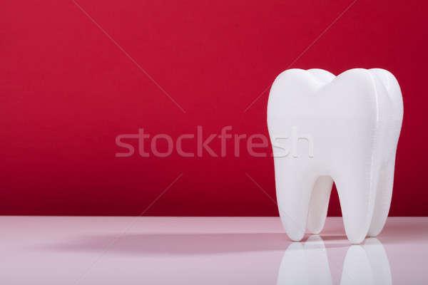 Single White Tooth On Grey Background Stock photo © AndreyPopov