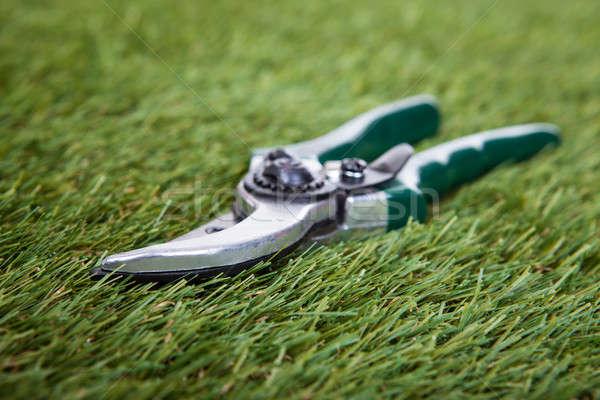 ストックフォト: ガーデニング · ツール · 緑の草 · クローズアップ · 背景 · 緑