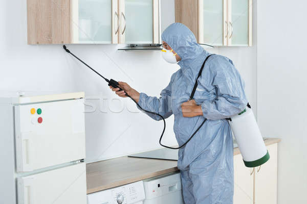 Exterminator In Spraying Pesticide In Kitchen Stock photo © AndreyPopov