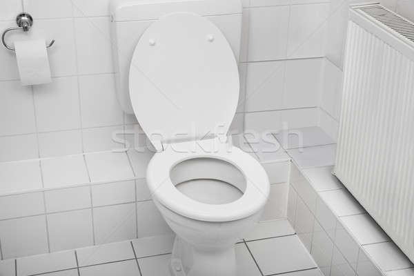 White Toilet Bowl In Bathroom Stock photo © AndreyPopov