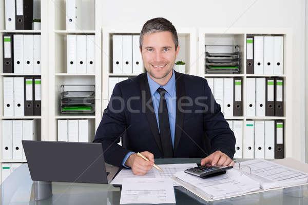Contador financeiro dados bem sucedido imposto Foto stock © AndreyPopov