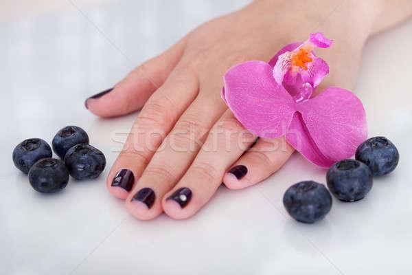 Orchideák gyönyörű körmök friss rózsaszín kéz Stock fotó © AndreyPopov