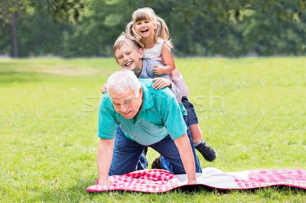 Portret dziadek wnuki trawy szczęśliwy Zdjęcia stock © AndreyPopov