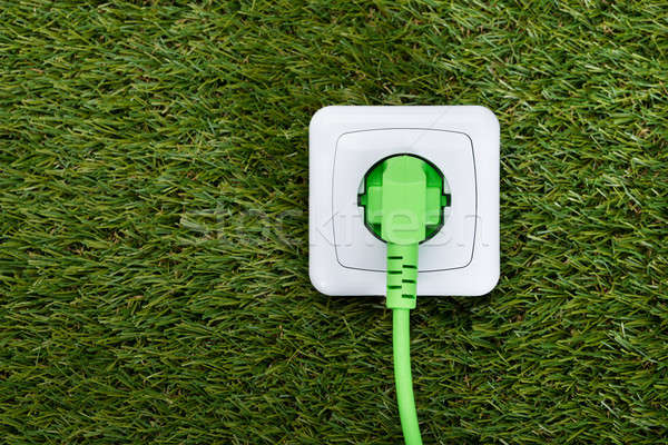 Green Plug In Outlet On Grass Stock photo © AndreyPopov