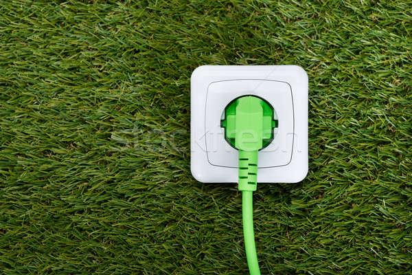 Verde plugue grama natureza eletricidade Foto stock © AndreyPopov