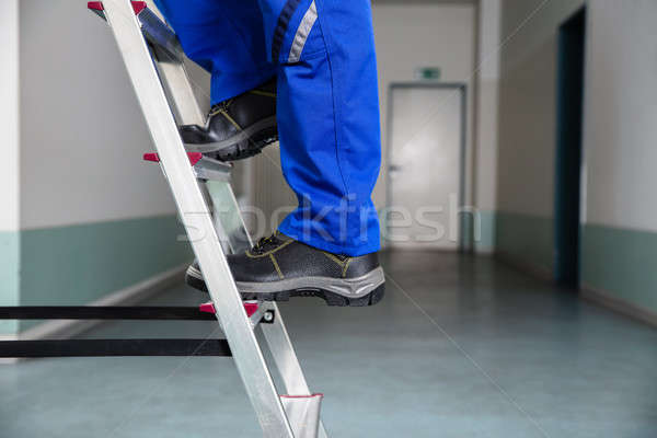 мастер на все руки скалолазания лестнице низкий мнение Сток-фото © AndreyPopov