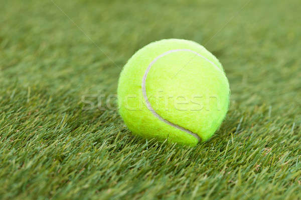 Tennis Ball On Green Pitch Stock photo © AndreyPopov