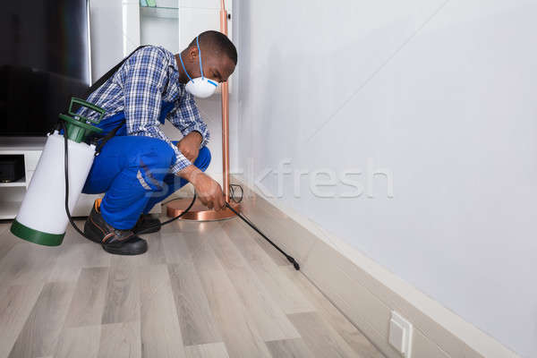 Male Worker Spraying Pesticide Stock photo © AndreyPopov