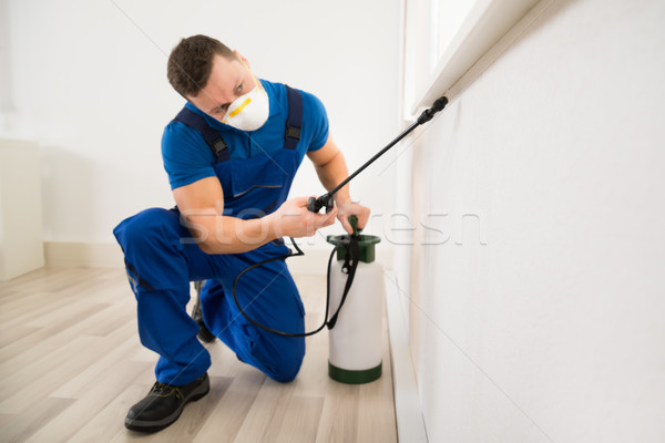 Worker Spraying Pesticide On Window Corner Stock photo © AndreyPopov