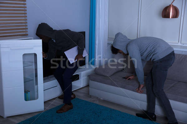 Two Burglar Stealing Things In The House At Night Stock photo © AndreyPopov