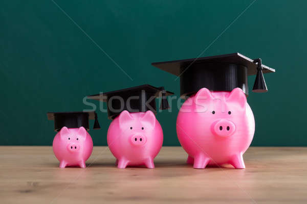 Close-up Of Increasing Pink Piggy Banks Stock photo © AndreyPopov