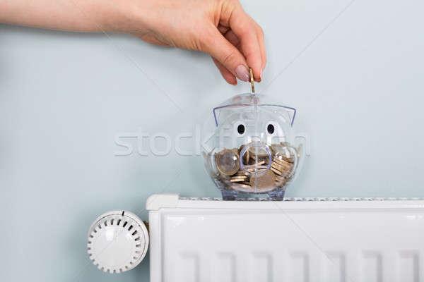 Persona moneta radiatore primo piano mano Foto d'archivio © AndreyPopov