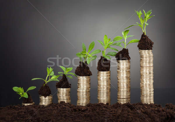 Saplings On Stack Of Coins Representing Growth Stock photo © AndreyPopov