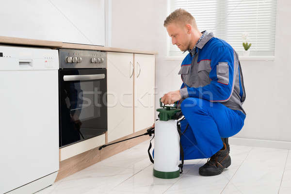 Man Spraying Pesticide In Kitchen Room Stock photo © AndreyPopov