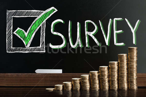 Customer Satisfaction Survey On Blackboard Stock photo © AndreyPopov
