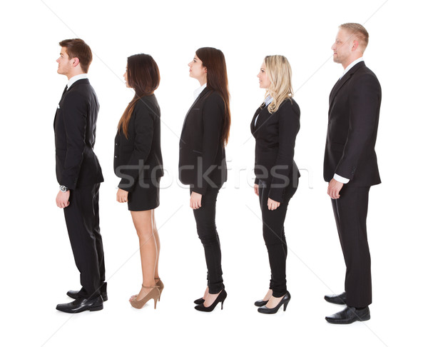 Welldressed Businesspeople Standing In A Line Stock photo © AndreyPopov