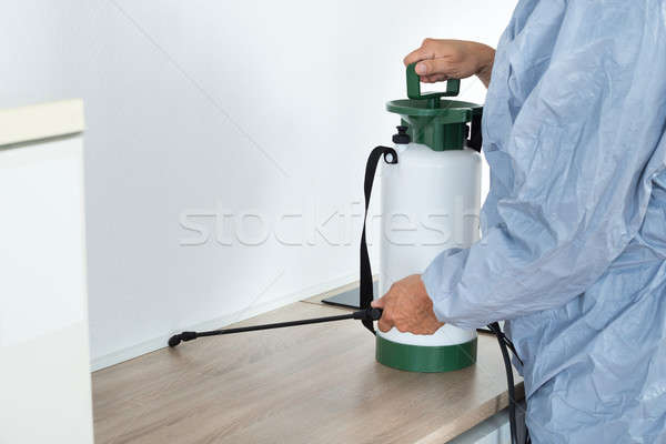 Exterminator Spraying Pesticide On Kitchen Counter Stock photo © AndreyPopov