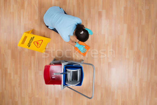 Kobieta czyszczenia piętrze szmata widoku Zdjęcia stock © AndreyPopov