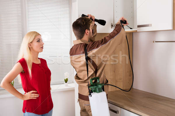 Male Worker Spraying Pesticide On Shelf In Kitchen Stock photo © AndreyPopov