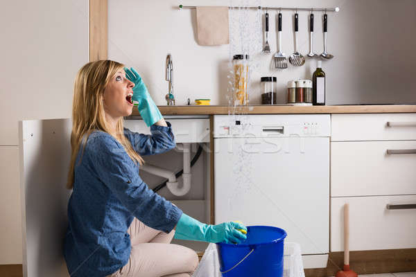 Woman With Leakage Problem In Kitchen Stock photo © AndreyPopov