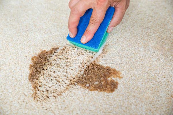 Hombre limpieza mancha alfombra esponja primer plano Foto stock © AndreyPopov