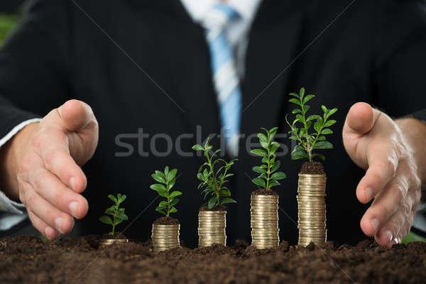 Stock foto: Hand · wenig · Anlage · gestapelt · Münzen