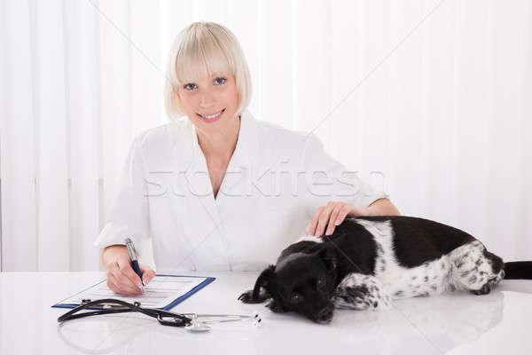 Female Veterinarian Writing Prescription For Dog Stock photo © AndreyPopov