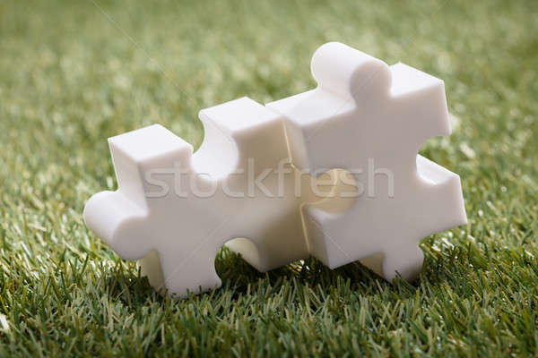 Elevated View Of Two Jigsaw Puzzle Stock photo © AndreyPopov