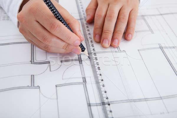 Mimar çalışma planları görüntü genç Stok fotoğraf © AndreyPopov