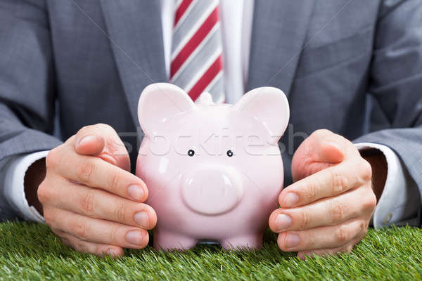 Businessman Sheltering Piggybank On Grass Stock photo © AndreyPopov