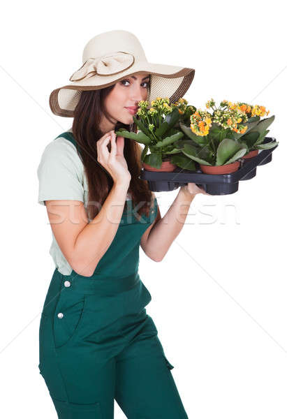 Happy Woman Inhaling Fragrance Of Fresh Flower Stock photo © AndreyPopov